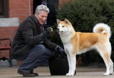 Dogs in History: Hachiko, the Dog that Waited for 9 Years