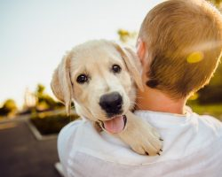 Everything A New Dog Owner Needs To Know Before Getting A Pup