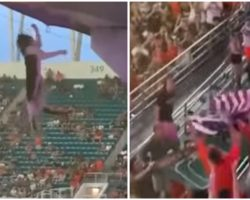 Fans Save Falling Cat's Life By Catching It With A Flag At A College Football Game