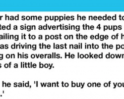 Boy Picks Out The Crippled Puppy Of The Litter To Buy From The Farmer