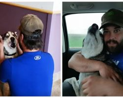 Four Years After His Dog Went Missing, Man Finds His Lost Dog & Has Tearful Reunion