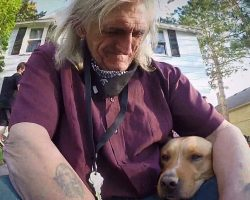 Veteran Finally Holds Beloved Dog Again After Lady Stole Pup Along With His Car