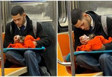 Man Spotted Bottle-Feeding Tiny Stray Kitten On Subway Is Restoring People's Faith In Humanity