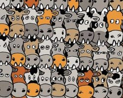 Find The Dog Hidden Amongst The Herd Of Cows