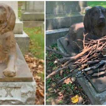 People are Leaving Sticks at this Grave of a Dog Who Died 100 Years Ago